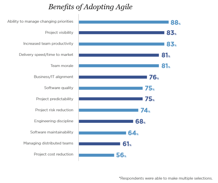 IN-BLOG-IMAGE-2-Benefits-of-Adopting-Agile